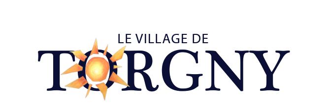 tor_logo2